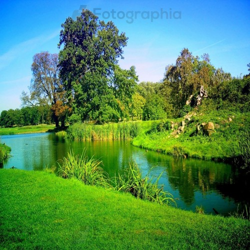 Pic of the nature